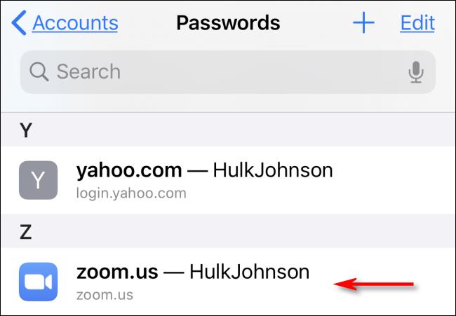 Toque el nombre de una cuenta para ver una contraseña de Safari guardada en Configuración en iPhone