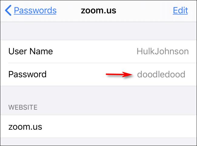 La contraseña de su sitio web se mostrará en Configuración en el iPhone